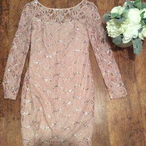 JS Collection Blush Lace Sheath Dress